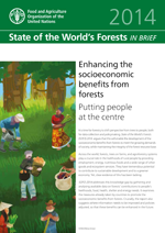 State of the World's Forests 2014. Enhancing the socioeconomic benefits from forests. In brief