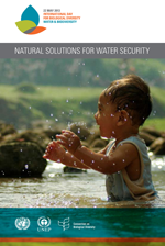 Natural solutions for water security