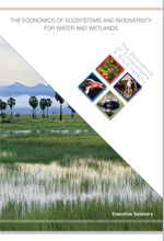 TEEB for water and wetlands. Executive summary