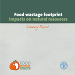 Food wastage footprint. Impacts on natural resources