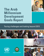 The Arab Millennium Development Goals Report. Facing challenges and looking beyond 2015