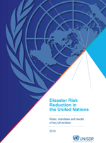 Disaster Risk Reduction in the United Nations. Roles, mandates and results of key UN entities