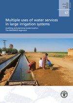 Multiple uses of water services in large irrigation systems. Auditing and planning modernization. The MASSMUS Approach