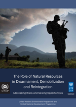 The Role of Natural Resources in Disarmament, Demobilization and Reintegration. Addressing Risks and Seizing Opportunities