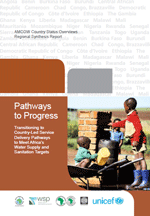 Pathways to Progress. Transitioning to Country-Led Service Delivery Pathways to Meet Africa's Water Supply and Sanitation Targets