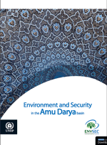 Environment and Security in the Amu Darya Basin