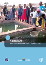 Post-harvest issues in fisheries and aquaculture. Junior Farmer Field and Life School - Facilitator's guide