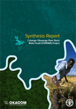 Synthesis report: Cubango-Okavango River Basin Water Audit (CORBWA) Project
