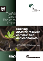 Building disaster-resilient communities and economies