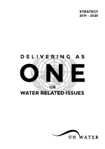 Delivering as one on water related issues. UN-Water strategy 2014-2020