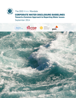 Corporate Water Disclosure Guidelines. Toward a Common Approach to Reporting Water Issues
