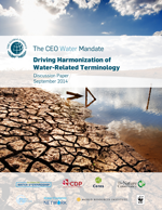 Driving Harmonization of Water-Related Terminology. Discussion paper