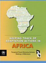 Keeping Track of Adaptation Actions in Africa. Targeted Fiscal Stimulus Actions Making a Difference