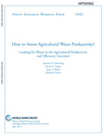 How to assess agricultural water productivity? Looking for water in the agricultural productivity and efficiency literature