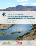 Understanding sufficiency in water-related collective action. Discussion paper