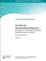 Scaling Up Handwashing Behaviour: Findings from the Impact Evaluation Baseline Survey in Vietnam