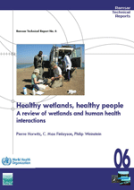 Healthy wetlands, healthy people. A review of wetlands and human health interactions