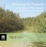 Releasing the Pressure: Water Resource Efficiencies and Gains for Ecosystem Services