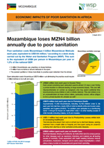 Economic Impacts of Poor Sanitation in Africa: Mozambique
