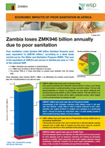 Economic Impacts of Poor Sanitation in Africa: Zambia