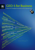 GEO-5 for Business: Impacts of a Changing Environment on the Corporate Sector