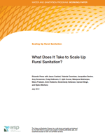 What Does It Take to Scale Up Rural Sanitation?