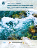 Corporate Water Disclosure Guidelines: Public Exposure Draft. Executive summary