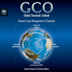 Global Chemicals Outlook (GCO). Towards Sound Management of Chemicals. Synthesis Report for Decision-Makers