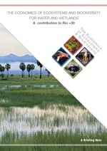 The Economics of Ecosystems and Biodiversity for Water and Wetlands. Final Consultation Draft