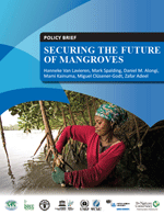 Policy Brief: Securing the future of mangroves