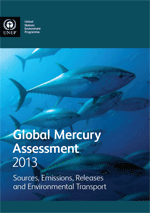 Global Mercury Assessment 2013. Sources, Emissions, Releases and Environmental Transport