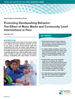 Promoting Handwashing Behavior: The Effect of Mass Media and Community Level Interventions in Peru. Executive summary