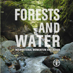 Forests and Water. International momentum and action